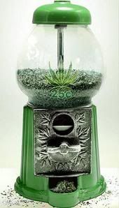 """#Weed ~ """"Weed machine...and how much do you get for a quarter?!?! lol"""""""