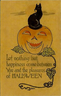 This could be a nice tattoo, without the words, just the punpkin and cat.