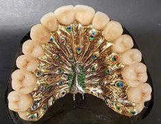Павлин и зубной протез #стоматология #dentistry