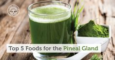 The pineal gland regulates various hormones that keep your metabolism moving. Choose foods for the pineal gland is crucial for maintaining vibrant health.