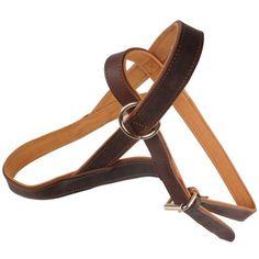 Одежда для собак rungo