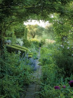 LABOR OF LOVE The view from Federico Forquet's guesthouse with roses, irises and wildflowers that he has planted.