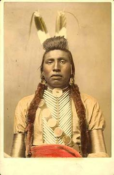 white bull - crow - circa 1880