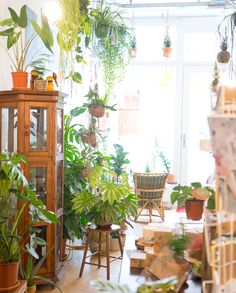 new jungle shop in Den Bosch (the Netherlands): Oerwoud! Urban Jungle shop with lots of plants, rotan, peacock chairs, a healthy café and more plants