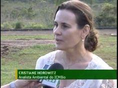 Instituto Chico Mendes recruta voluntários para preservar o meio ambiente #icmbio #meioambiente #preservacao