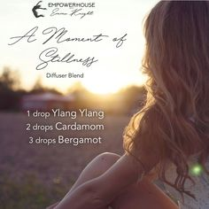 A moment of stillness - ylang ylang, cardamom and bergamot Essential Oil Diffuser Blends, Essential Oils, Doterra Grounding Blend, Diffuser Recipes, Natural Solutions, Bergamot, Aromatherapy, In This Moment, Drop