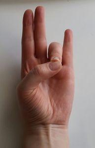 Síla muder – jednoduché jogínské pozice prstů ovlivňují náladu i zdraví | ProKondici.cz Health Fitness, Body Fitness, Yoga, Hands, Fitness, Health And Fitness