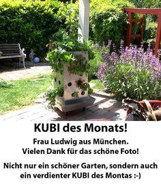 2014-11 KUBI des Monats Ludwig München