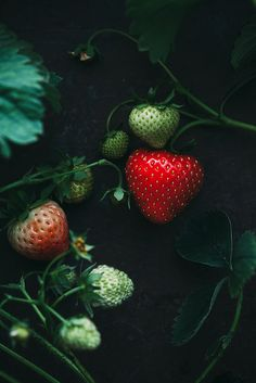 Capture the small amounts of mass that still serve a purpose, but take up little space. #strawberries