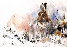 "Saatchi Online Artist: Lucy Newton; Mixed Media, Painting ""Snowshoe Hare"""
