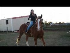 Riding a Draft Horse