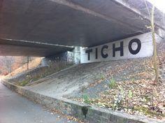Timo - Ticho
