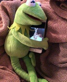 Bangtan in Social Networks # 3 - 77 - Kermit the Frog Memes Kermit Face, Kermit The Frog, Sapo Kermit, Kpop, Les Muppets, Best Memes, Funny Memes, Sapo Meme, Oui Oui
