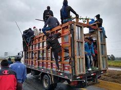 Aufruhr in Ecuador nicht nur wegen höheren Benzinpreisen Reportage, Ecuador, Sparrowhawk, Latin America, Caribbean, Army, Messages