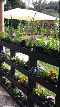 30 Most Inspiring DIY Pallet Garden Fence Ideas To Improve Your Outdoor Space is part of Pallets garden - Check out some inspiring pallet garden fence ideas which you can make easily at home! Tyeh won't cost you a lot but enough t enhance your backyard! Outdoor Projects, Garden Projects, Pallet Projects, Pallet Ideas, Diy Projects, Pallet Garden Ideas Diy, Fence Design, Garden Design, Diy Fence