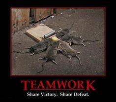 #Demotivational Posters: Teamwork