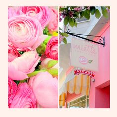 Roses and Sweets and pink pink pink!