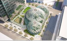 Amazon Wants To Build A Bio-Dome Three Blocks From An Actual, Normal Park