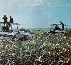 German armoured cars near Donetz, eastern front WW2, pin by Paolo Marzioli
