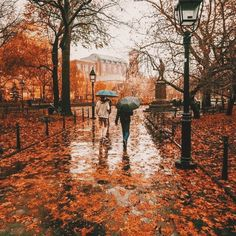 Autumn Rain Imagine a crisp autumn day and the rain has just begun to fall. The fresh, dewy, cool autumn air carries the scent of dried leaves and hay bales from the farm next door as well as amber and fresh c… Autumn Rain, Autumn Cozy, Autumn Leaves, Autumn Music, Fallen Leaves, Autumn Nature, The River, Washington Square Park, Autumn Aesthetic