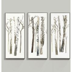 "Ballard Designs Fresh Birch Art - Set of 3  31"" x 14"" ($649) ❤ liked on Polyvore featuring home, home decor, wall art, birch wall art, 3 piece wall art, ballard designs, set of 3 wall art and 3 pc wall art"