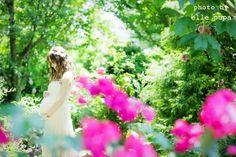 マタニティフォト by ellepupa ② の画像|wedding note♡takacomachi*。