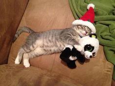 Santa didn't forget me!