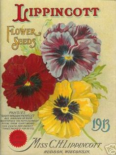 I love vintage seed catalogs--I have several framed around the house. This one's pretty.