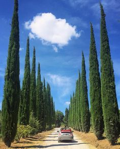 Philippa Stanton @5ftinf ...☁️ #tuscany Postcards From Italy, Tuscany, Wanderlust, Mountains, Nature, Instagram Posts, Travel, Naturaleza, Viajes