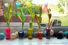 eksperyment barwienie kwiatów
