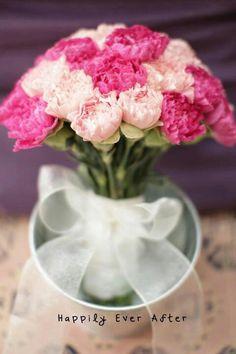 So pretty, Carnations!