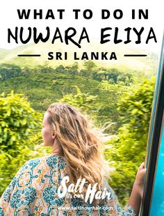 Impressive green tea hills of Nuwara Eliya, Sri Lanka