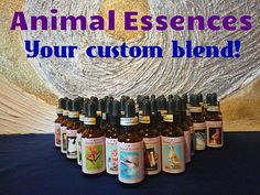 ANIMAL ESSENCES - the next step in Flower Essences world. Help your soul. Custom blend bottle! Receive your unique dowsing session! di StargateOrgonite su Etsy