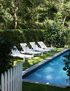 white picket gate, privacy hedge, flowering white roses and shrubs and a lawn to the concrete edging of the pool