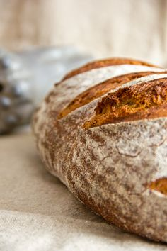 Spelled and rye loaf - It should be a souvenir for visiting friends. Baked in a strange kitchen without any bread bakery eq - Pumpkin Chocolate Chip Cookies, Chocolate Chip Recipes, Croissants, Bread Recipes, Baking Recipes, German Bread, French Bakery, Our Daily Bread, Fresh Bread