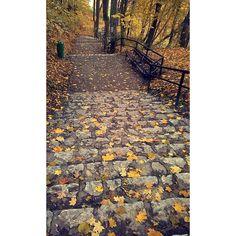 #chyba #się#zakochałam  #chce#tam#wracac#kazdego#dnia   #autumn#ojców#trip