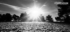 365 Tage Fotochallenge: Tag 341 - In schwarz-weiß auch schön...