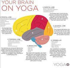 How #yoga impacts brain function