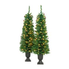 4.5' Pre-Lit Artificial Evergreen Urn Trees with Clear Lights & Berries, 2-Pack at Big Lots. 50 for the set.