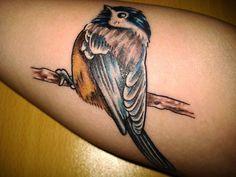 bird tattoos on Pinterest | Bird Tattoos, Blue Bird ...