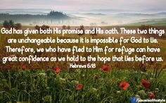 Hebrews 6:17-18 NKJV Thus God, determining to show more abundantly to the heirs of promise the immutability of His counsel, confirmed it by an oath, that by two immutable things, in which it is impossible for God to lie, we might have strong consolation, who have fled for refuge to lay hold of the hope set before us.