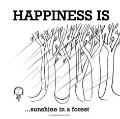 Happiness is .sunshine in a forest. Make Me Happy, Make You Smile, Are You Happy, Cute Happy Quotes, Reasons To Be Happy, Happy Things, Best Quotes, Life Quotes, Love Thoughts