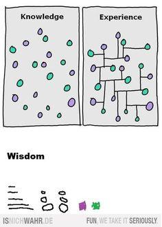 wisdom trumps it all