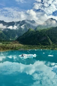 Sharing our Alaska summer trip Itinerary because it was one of the best trips ever. If you're looking for the best Summer in Alaska activities, this is it! Alaska Travel, Travel Usa, Alaska Summer, Visit Alaska, Kenai Fjords, Viewing Wildlife, Just Dream, Vacation Pictures, Honeymoon Pictures
