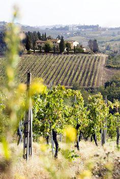 In de heuvels van #toscane tussen de wijngaarden ligt #Partingoli