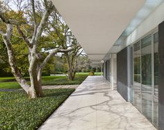 The Miller house has clean lines, a covered wrap-around patio, walls of glass, exposed structure and manicured landscaping.