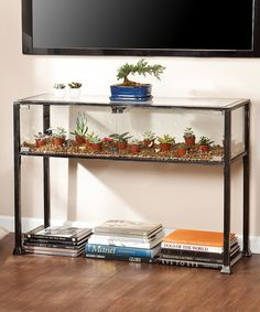 Another great find on #zulily! Terrarium Display Console Table #zulilyfinds