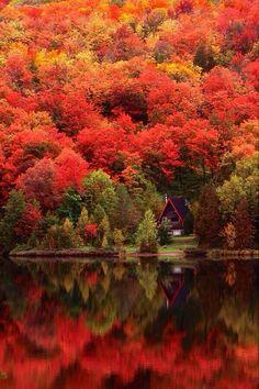 Luxury Door Hardware @DoorHardwareLux   beautiful colors of nature! RT @IldeAlberti: Autunno