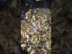 Ciulama de ciuperci Champignon - YouTube How To Dry Basil, Herbs, Youtube, Food, Meal, Essen, Herb, Hoods, Meals