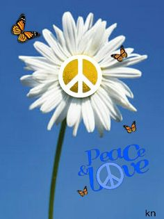 Peace and Love for everyone I know who I'm help through, love you AshlieTerry! Hippie Peace, Happy Hippie, Hippie Love, Hippie Style, Hippie Things, Peace On Earth, World Peace, Peace Of Mind, Peace Love Happiness
